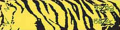BOHNING CO LTD Blazer Carbon Wrap Yellow Tiger