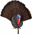 CHEROKEE SPORTS LLC Cherokee Turkey Taxidermy Bust Plaque