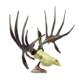 SIGNATURE PRODUCTS GROUP Big Rack Whitetail Raxx