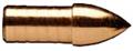 GOLD TIP LLC .246 GT Glue-In Adjustable Weight Point 100gr
