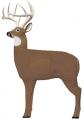 FIELD LOGIC Glendel Pre Rut Buck Target