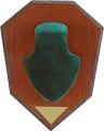 ALLEN CO INC Allen Antler Mounting Kit Green Skull Cap