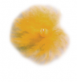 GATEWAY FEATHER LLC Yellow Feather Tracer