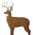 FIELD LOGIC Glendel Buck w/Vital Target